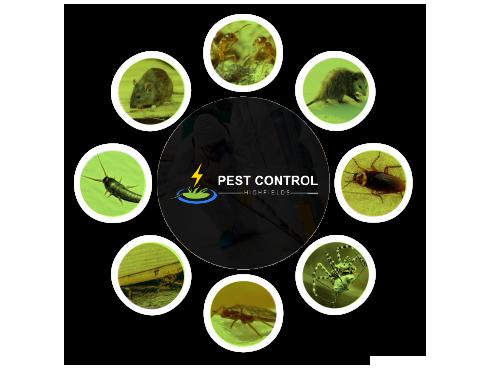 Pest Control Highfields